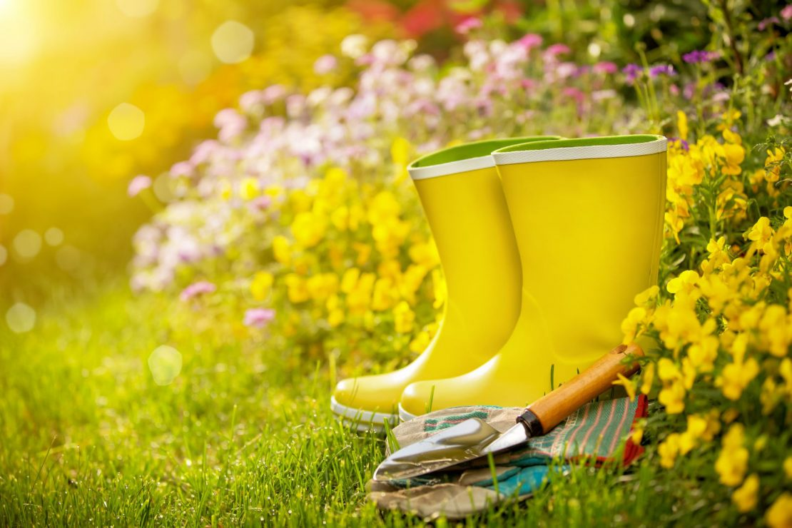 Spring Cleaning Naturally for your Apartment Ann Arbor